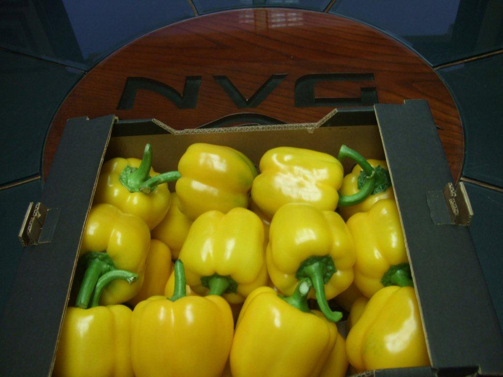 Bell Peppers 4