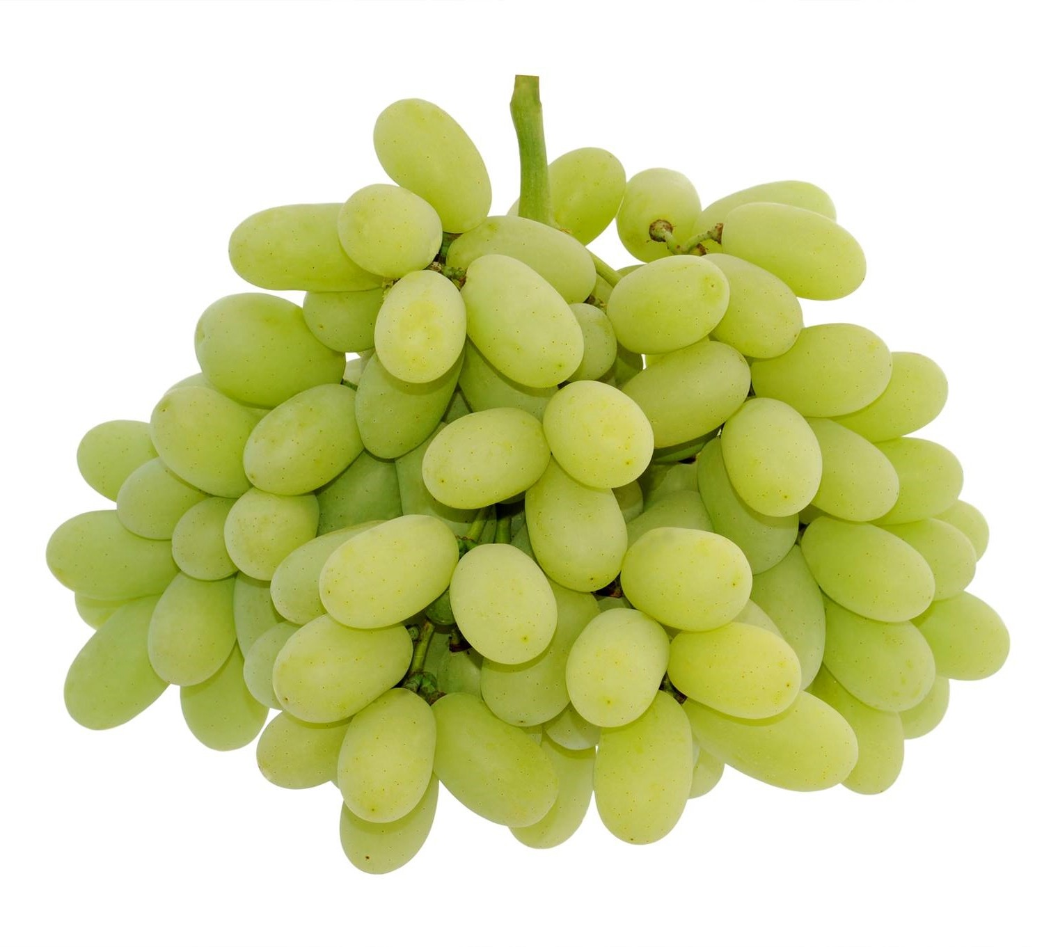 Superior-Grapes-3